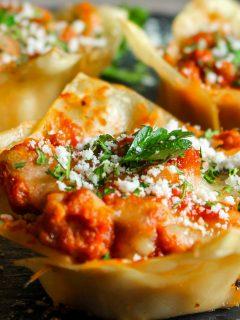 close up of lasagna bites