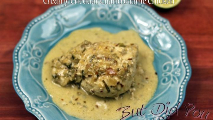 Creamy Cheddar Cilantro Lime Chicken Only 3g Carbs!