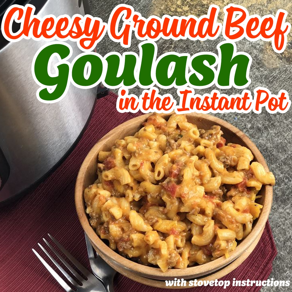 SQUARE IMAGE OF GROUND BEEF GOULASH