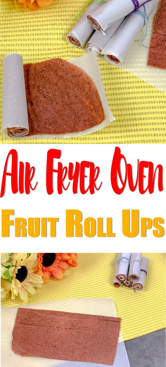 Fruit roll ups are a snack that kids love, I know mine do. What if I told you that you can make homemade fruit roll ups at home in your air fryer oven using the dehydrator function. fruitrollups #homemade #recipe #dehydrator