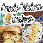 photo collage of bacon ranch chicken in the instant pot with text which reads 10+ Instant Pot Crack Chicken Recipes